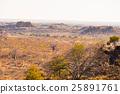 The desert landscape of Mapungubwe National Park 25891761