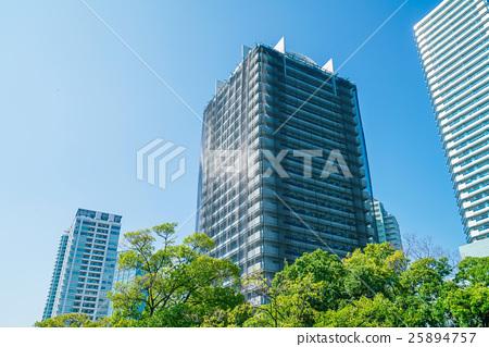 Apartment · Bird Protection Net 25894757