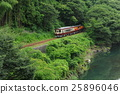 火车 树木 树 25896046