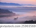 หมอก,ป่า,ภูมิทัศน์ 25903569