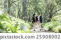 산책을 즐기는 부부 25908002