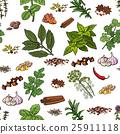 spice herb pattern 25911118