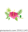 flower, tropical, hawaii 25911145