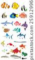 鱼 热带鱼 耳带蝴蝶鱼 25912996