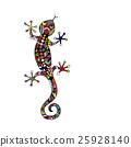 animal, lizard, reptile 25928140