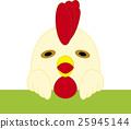 이상한 닭 25945144