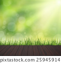 green turf with wooden grain 25945914