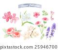 Flower watercolor elements 25946700