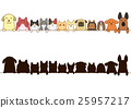 dog, dogs, cat 25957217