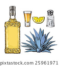 Set of tequila bottle, shot, salt mill, agave and 25961971