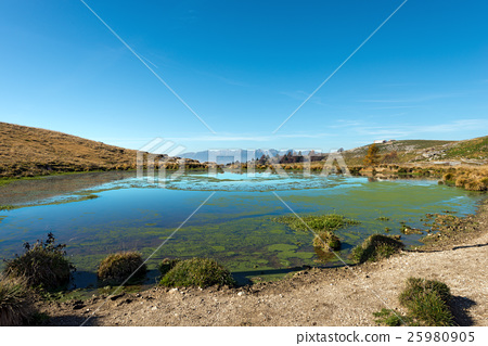 Small Pond in Lessinia and Italian Alps 25980905