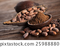 Cocoa beans in the dry cocoa pod fruit on wooden  25988880