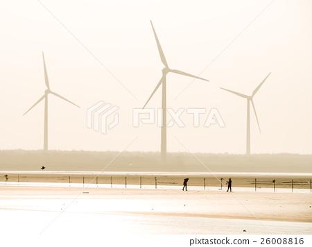 高美濕地 26008816