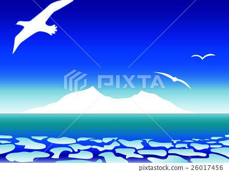 유빙의 바다 빙산과 바다새 26017456