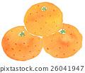 Mandarin orange 26041947