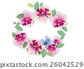 crown flowers set  side way and top isolated on wh 26042529