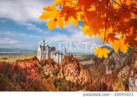 Neuschwanstein castle in autumn, Bavaria, Germany 26045025