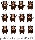 bear, vector, animal 26057333