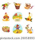 bird vegetables bread 26058993