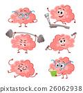 brain vector training 26062938