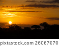 African sunset with trees 26067070