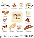 cinnamon, coriander, ginger 26082405
