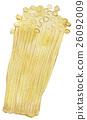 水彩畫 水彩 蔬菜 26092009