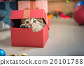 kitten playing in a gift box 26101788
