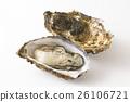 生牡蠣 牡蠣 海產品 26106721