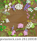 Flowering herbs on wooden background. 26116938