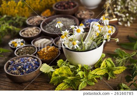 Alternative medicine, dried herbs and mortar  26160785