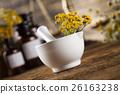 의학, 허브, 의약품 26163238