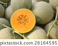 Cantaloup melon 26164595