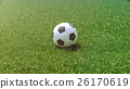soccer ball in the grass field. 3d rendering 26170619