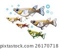 Medaka illustration material 26170718