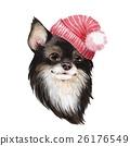 hat, cap, dog 26176549