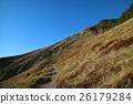新西蘭尼爾森湖國家公園 26179284