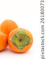 japanese persimmon, persimmon, shibugaki 26180073