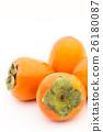 japanese persimmon, persimmon, shibugaki 26180087