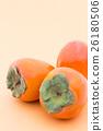 japanese persimmon, persimmon, shibugaki 26180506