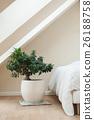 bedroom with zen decorative bonsai  26188758