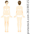 female, lady, woman 26196515