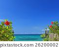 沖繩藍色haiku和開花在藍天的紅色hibiscuses 26200002