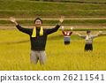 水稻收获肖像 26211541