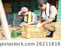 夫妇 马铃薯 土豆 26211816