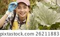 女性 乡村生活 蔬菜 26211883