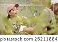 女性 農舍 農夫 26211884