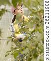 女性 西紅柿田 番茄 26211908
