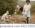 家庭 農活 豐收 26211950