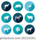 animal, australia, set 26220261